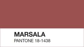 Marsala pantone article