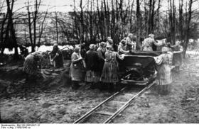 Bundesarchiv bild 1831985041715 ravensbruck konzentrationslager.jpg.crop.original original article