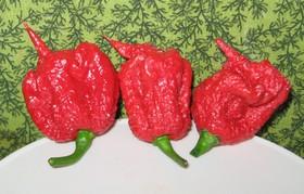 Carolina reaper pepper pods 940x600 article