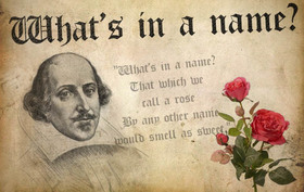Shakespeare article