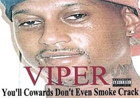 Ifwt viper6 article
