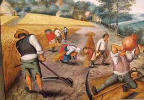 Pieter bruegel il giovane estate 02 article