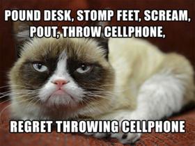 Grumpy cat article