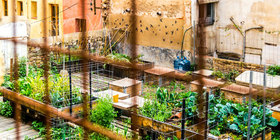 Garden shutterstock main article