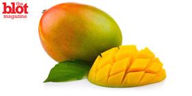Blot 3 16 mango article