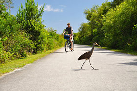 Florida bike trail article