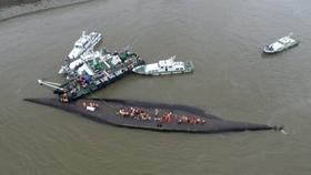 Yangtze river article