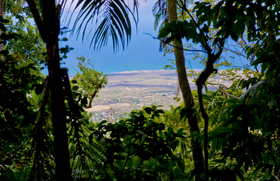 View from nevis peak nevis tourism authority article