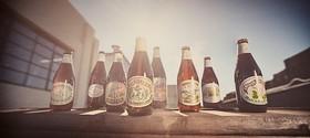 Beer2 article