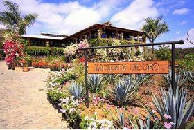 Hacienda.jpeg.size.xxlarge.letterbox article