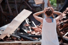 Most expensive natural disasters article