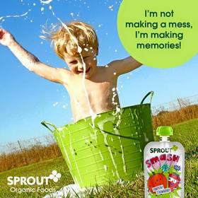 Sprout2 article