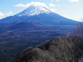 Fuji article