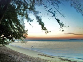 Changi beach article