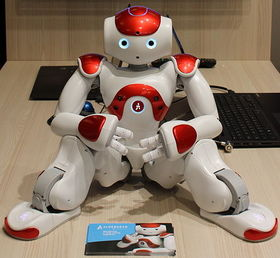 Innorobo 2015   nao %28cropped%29 article