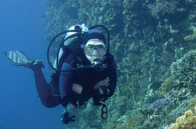Choral reefs article