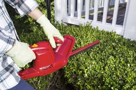 Hedge trimmer 620x412 article