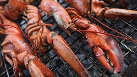 618 348 how to grill a lobster article