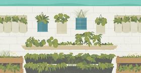 Vertical gardening open graph article