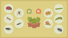 Common garden pests and how to manage them open graph article