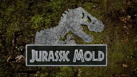 Jurassicmold2 20copy article