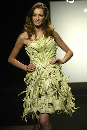 Austin scarlett corn husk dress article