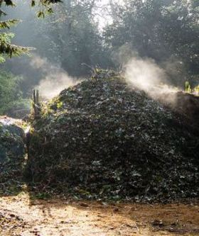 504px compost heap article