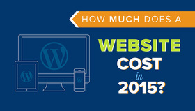 Website cost article