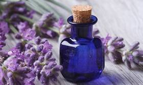 Lavender article