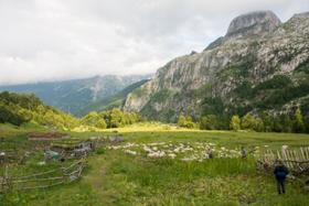 Pob shepherds cerem albania 1 article