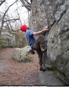 Rock climbing wall franchises article