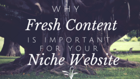 Why fresh content is important for your niche website article