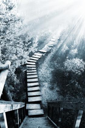 Stairway shutterstock 55729741 saiva l article