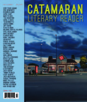 Pages from cat11 17a with cover article