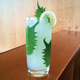 Fwx partner liquor punniest cocktails names shisofine article