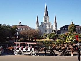 Mule drawn carrages at jackson square  st. louis cathedral article