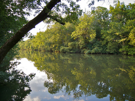 135733 stones river greenway feature article