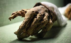 Post mortem with simon davis 1418096350 article