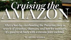 Amazon by fredric hamber article