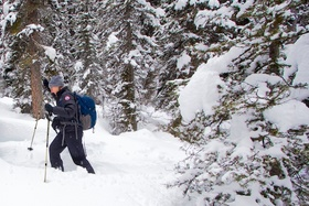 Snowshoeing alberta 1 article