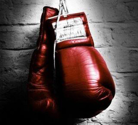 Boxing gloves article