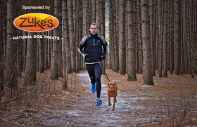 How to train your dog to run with you article
