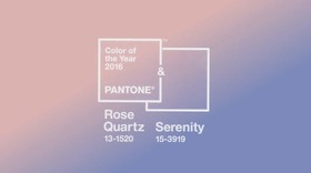 Pantone feature article