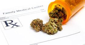 Medical marijuana2 630 article