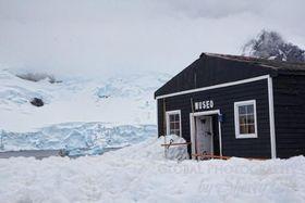 Antarctica museum article