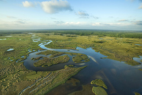 Aerial view of florida everglades dd article