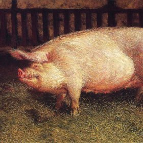 Pig article