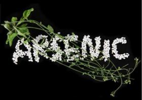 Arsenic contaminates rice article