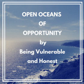 Openoceansopportuntyvulnerablehonest article