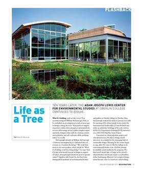 Life%20as%20a%20tree article